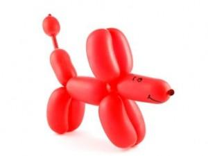 Rode hond; een besmettelijke huidziekte