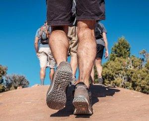 trombosebeen voorkomen
