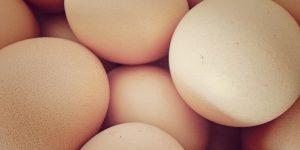 eggs-1433738-1-m